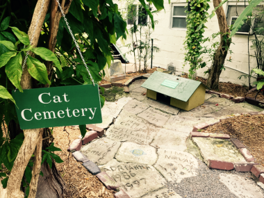 So many deceased cats named after famous people, Ernest Hemingway home in Key West.